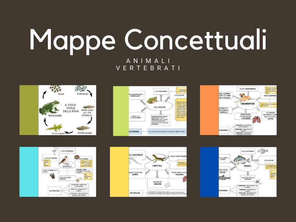 Gli Animali Vertebrati – Mappe Concettuali